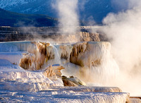 Mammoth Hot Springs at Dawn