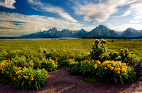 Willow Flats Overlook, Grand Tetons 2